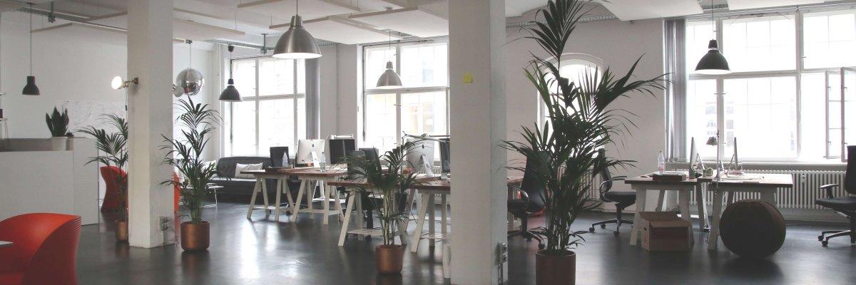 La importancia de un ambiente de trabajo limpio.